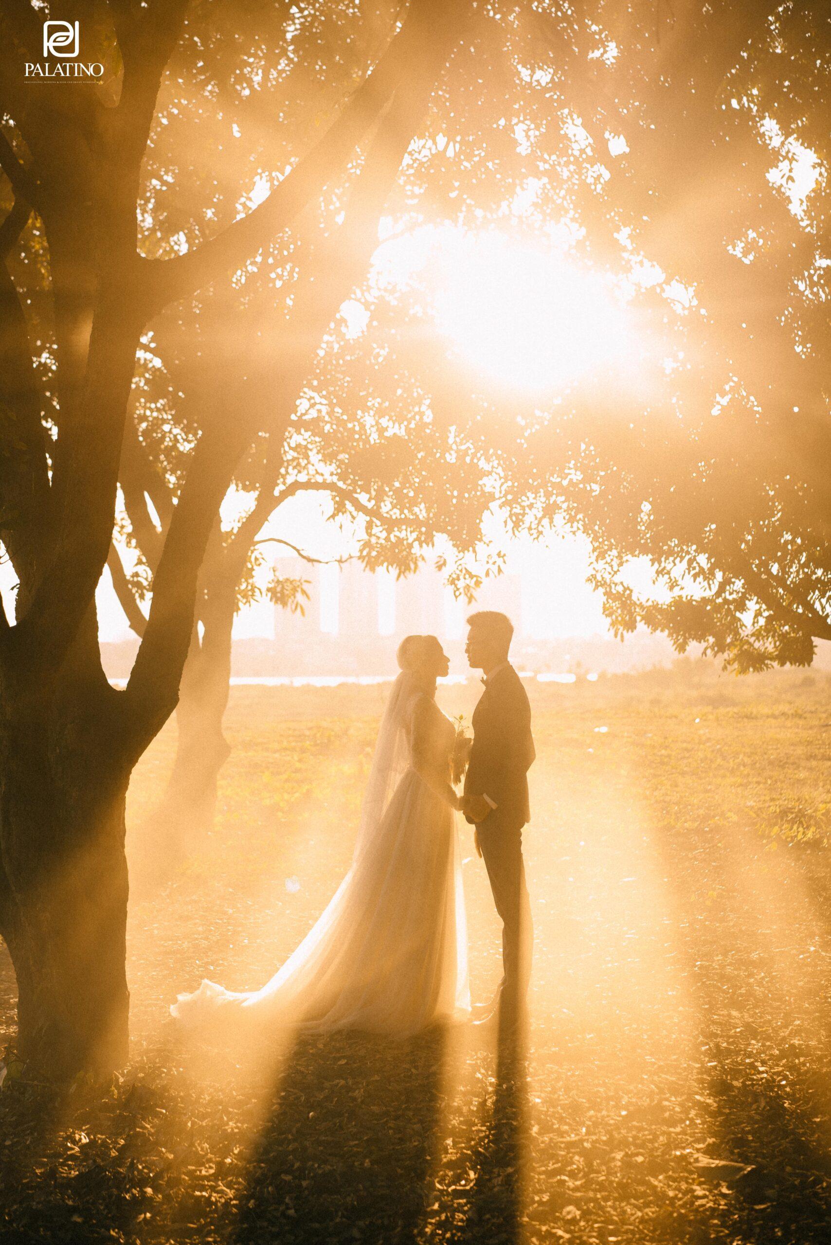chụp ảnh cưới tại vườn nhãn