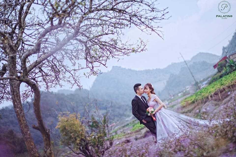 Chụp ảnh cưới ở Mộc Châu