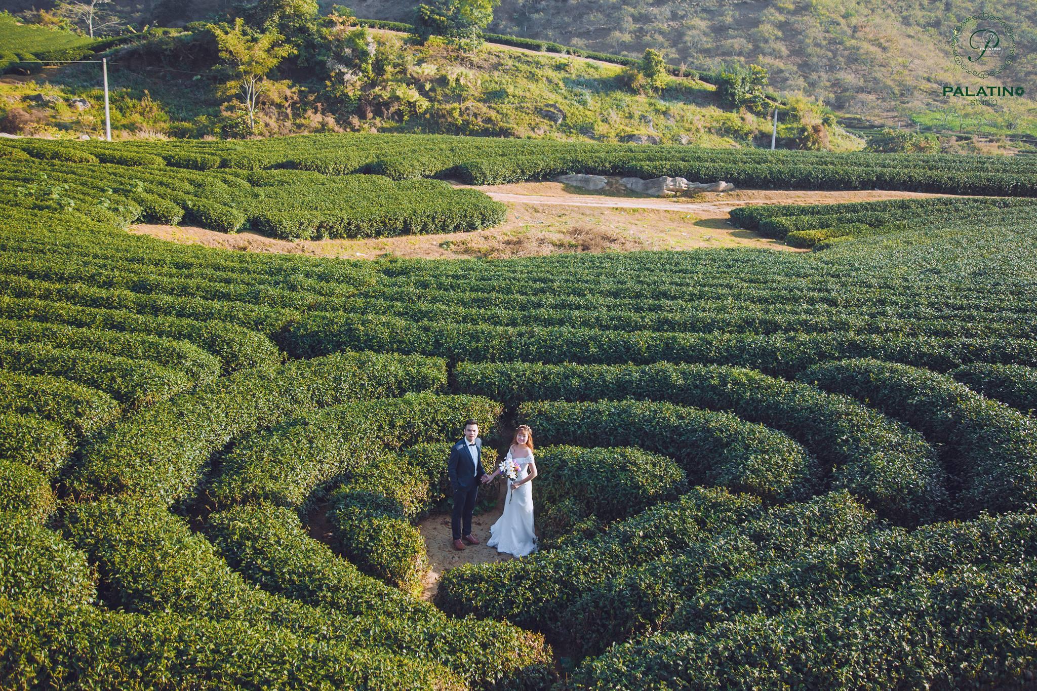 Địa điểm chụp ảnh cưới miền Bắc